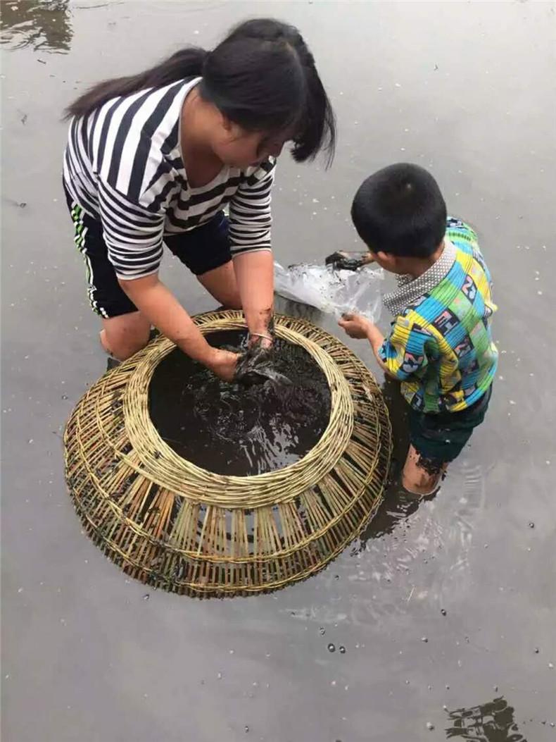 http://1541362480.qy.iwanqi.cn/171013103308667916679727.jpg
